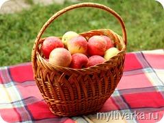 Яблочный компот со специями в мультиварке